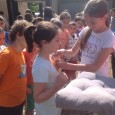 """Il 5 giugno 2014, nel Plesso di Scuola Primaria """"R. La Crociera"""", si è svolta la """"Cerimonia del Passaggio"""" che ha visto coinvolte le classi seconde, terze e quinte del […]"""