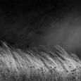 Il vento è un fenomeno atmosferico dovuto al riscaldamento del Sole. Il Sole irradia sulla Terra 1.74 x 1017 watt di potenza; di questa circa il 2% viene convertita in […]