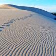 Parliamo delladune du pilat ,cioè della duna Francese più alta d'Europa. Lunga 2,7 km, larga 500 m e alta fino a 110 m. Queste sono le dimensioni spettacolari della formazione […]