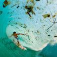 La plastica sta provocando l' estinzione di molti animali come: balene tartarughe marine, pesci di vario tipo e molti altri. L'inquinamento dovuto alla plastica si sta diffondendo in tutto il […]