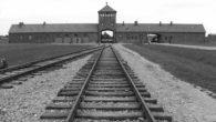 """27 Gennaio Giornata della Memoria """"Ci sono cose che tutti vogliono dimenticare. Ma io no. Io della mia vita voglio ricordare tutto, anche quellaterribile esperienza che si chiama Auschwitz: due […]"""