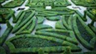 Alla scoperta del nostro giardino Nel corso di questi ultimi anni molti ragazzi dei due plessi di scuola media (Via Scartazzini e Via Carotenuto) hanno frequentato i corsi di botanica […]
