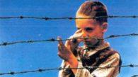 """Il film parla dell'Olocausto che noi ricordiamo ogni anno il 27 Gennaio nel """"Giorno della memoria"""". Il film è tratto da una storia vera e parla di un bambino di […]"""