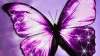 La Farfalla Farfallina spensierata lo sai tu dove sei nata? Eri un bruco in una cella senza sole e senza stella. Poi nel sole sei uscita come un fiore sei […]