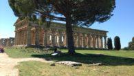 Giorno 18 aprile, alle ore 9:00 circa, noi, alunni delle classi IF e IG, siamo partiti per il campo scuola, organizzato dalla Prof.ssa Talarico, con destinazione Paestum e Pertosa. Eravamo […]