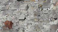 Il 24 Agosto al centro Italia c'è stato un terremoto che ha colpito in particolar modo Amatrice, ma si è anche esteso a tutto il centro Italia. Questo fenomeno ha […]