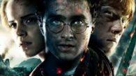 Harry Potter è un film che parla di un ragazzo che perde i suoi genitori quando era molto piccolo per colpa di Voldemort, la persona più temuta nel mondo magico. […]