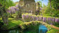 Il 28 maggio 2018 la classe 1°F si recherà alle Oasi di Ninfa, chiamate anche giardini di Ninfa. Questo posto si trova a Cisterna di Latina. E' un luogo maestoso […]