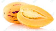 l pepino è una pianta esotica molto comune in Sud America ed è venduta in Gran Bretagna e Giappone per i suoi effetti benefici: contiene le vitamine A, B e […]