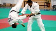 Il Kodokan Ghoshin Jutsu è un kata di difesa personale del Judo, creato nel 1956 da venticinque maestri. Il Ghoshin Jutsu è diviso in ventuno tecniche, di cui 12 sono […]